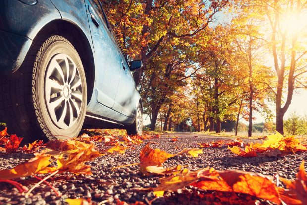Drive business during Fall Car Care Month